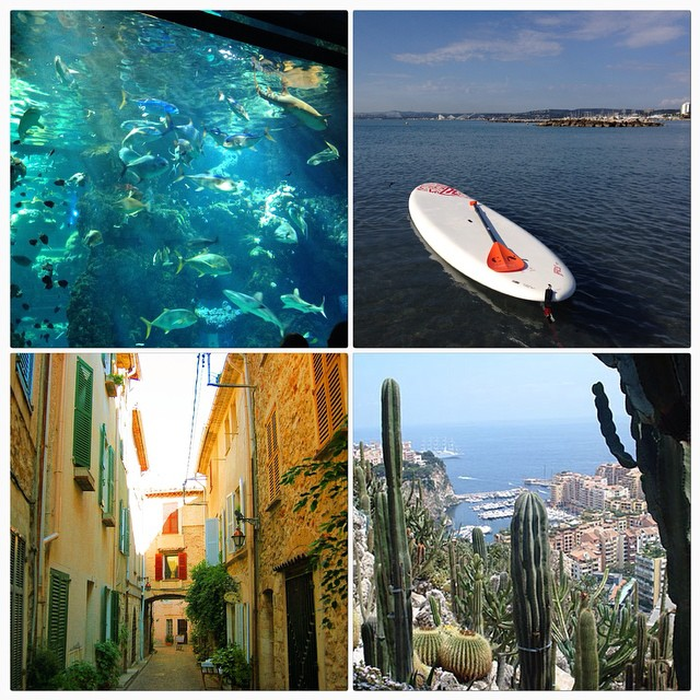 Avec la #cotedazurcard j'ai pu faire en un we une balade dans le vieil antibes, le musée océanographique de Monaco ainsi que le jardin exotique et enfin une heure de paddle à un tarif imbattable. Si mon  emploi du temps me l'avait permis j'aurais pu faire bien plus. #bonplan que je conseille à tous pour les vacances de la Toussaint ou l'été prochain @visitcotedazur